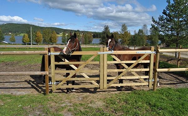 Barrière chevaux Eco-écurie