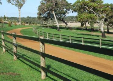 Ce type de clôture pour chevaux qui garantit leur bien-être
