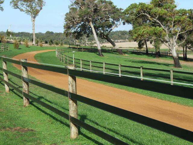 Clôture chevaux pour préserver leur bien-être