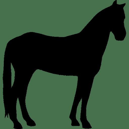 horse-quiet-black-silhouette
